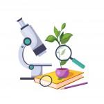 Кабинет биологии